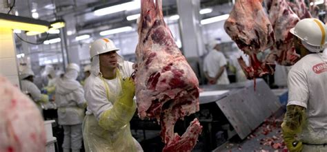 Top 10 Largest Meat Producing Countries In The World In 2019