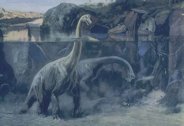 Scientists Debate the Posture of Sauropods